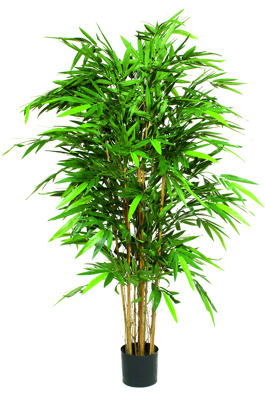 Finest Quality Artificial Plants That Look So Realistic