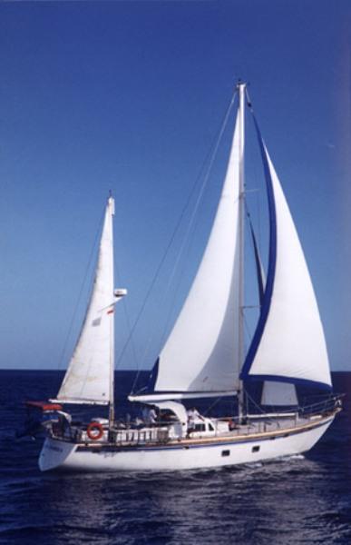 Relax Cruise Sehari Pulau Nusa Lembongan - Bali, Cruise, Aktivitas, Liburan, Atraksi
