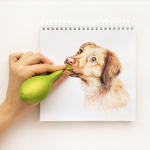 02-Balloons for the Party-Valerie-Susik-Валерия-Суслопарова-Cats-and-Dogs-Interactive-Animal-Drawings-www-designstack-co