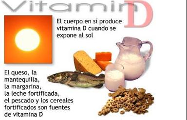 Carbohidratos vitaminas vitaminas - Alimentos que contiene vitamina d ...