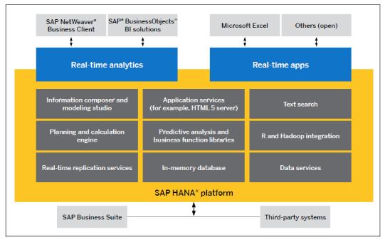 the sap data base essay