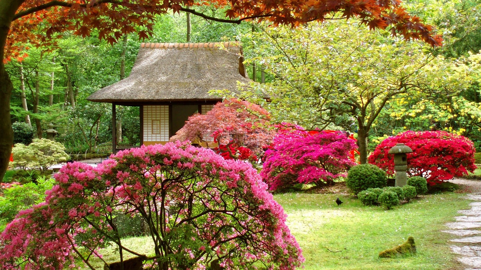 Download free spring wallpapers most beautiful places in for Jardin japonais
