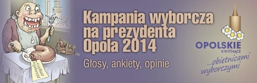 Kampania wyborcza<br> na prezydenta Opola 2014