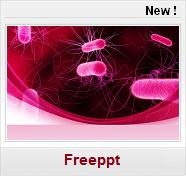 Modèles PPT gratuits Médecine Santé bacteriologie bacterie microbiology