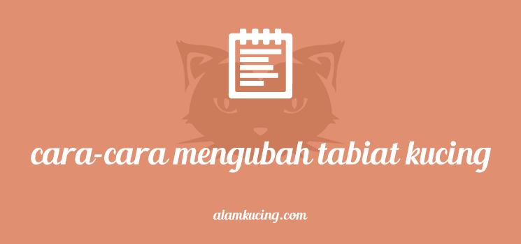Bagaimana mengubah tabiat kucing