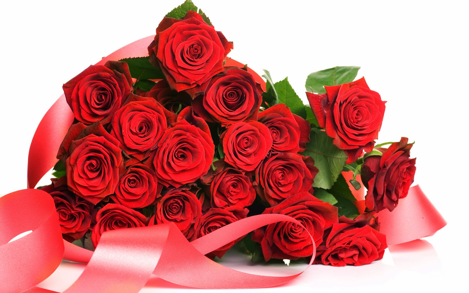 Red Rose HD Flowers Wallpapers - Flowers