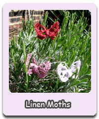 http://nezumiworld.blogspot.co.uk/2015/05/linen-moths-part-1.html