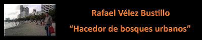 Rafael Vélez Bustillo: hacedor de bosques urbanos.