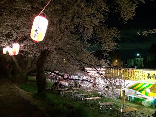 北越谷桜まつり
