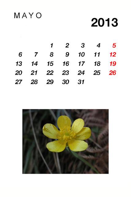 calendario,mayo