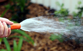 Sister missionaries water hose