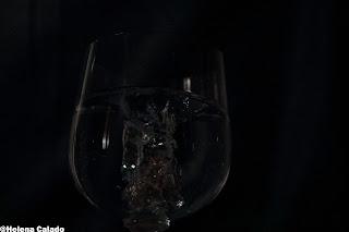 Fotografia alta velocidade com Flash de anel a cair num copo