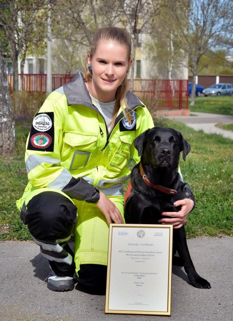 állatvilág, mentőkutya, Drazsé, Pest Megyei Kutató-Mentő Szolgálat, Nemzetközi Mentőkutyás Szövetség