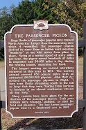 Featured Marker:<br>Marker 195: The Passenger Pigeo (Jackson County)