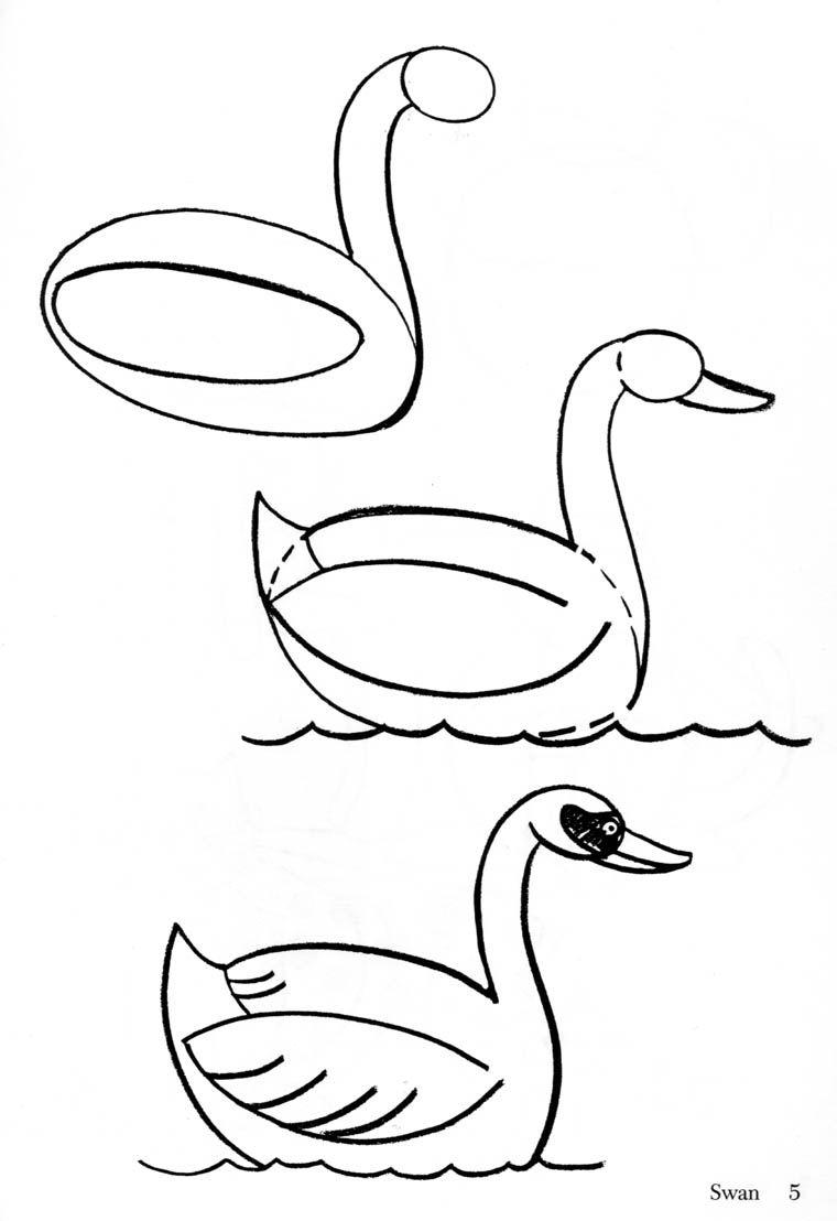 Las cosas que aprendo como dibujar animales - Pasos para pintar ...