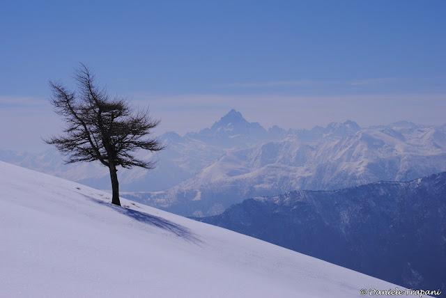 Monte Cuccetto
