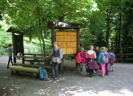 Nationalparkzentrum am Lusen in 94556 Neuschönau / germany
