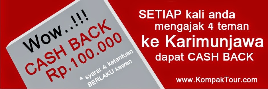 SPECIAL PRICE !