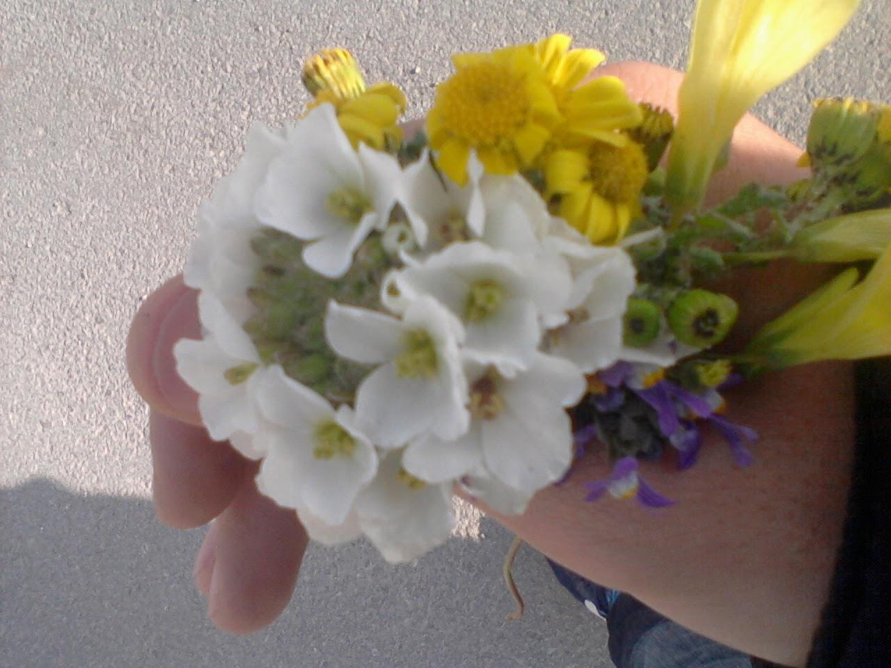 Perfect Bouquet Of Dogwood Flowers Motif - Best Evening Gown ...