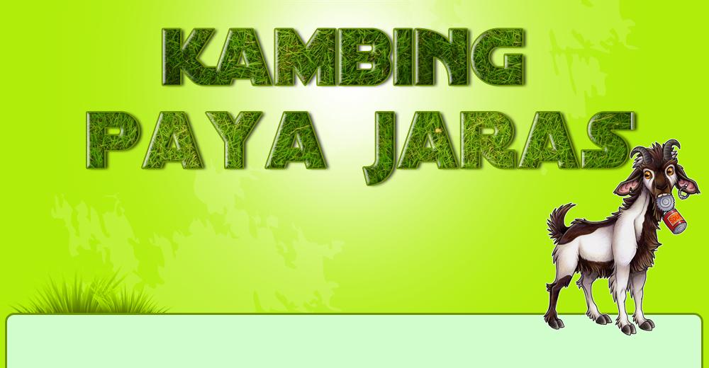 KAMBING PAYAJARAS
