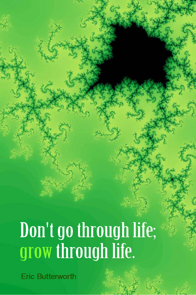 visual quote - image quotation for GROWTH and LIFE - Don't go through life; grow through life. - Eric Butterworth
