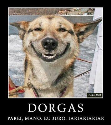 Esse é o tipico que comeu cocô no berço Dorgas-larguei5+%25281%2529