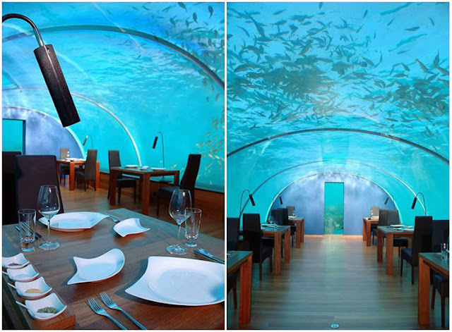 Amazing undersea resturant amazing wonderful world for Ithaa restaurant maldives