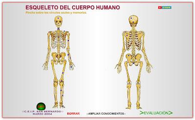 cuerpo humana gobierno canarias
