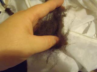 raw alpaca fiber