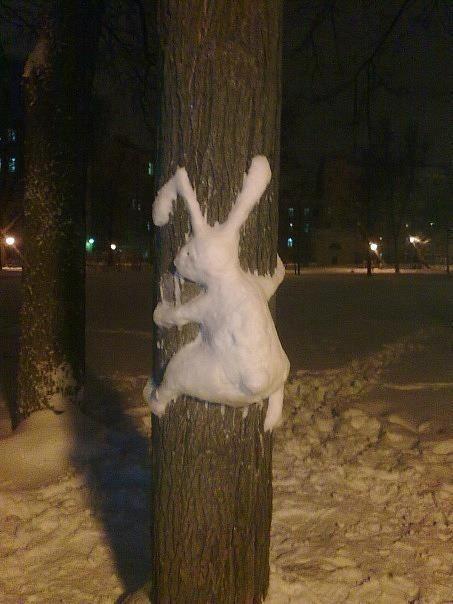 Das Bild des Tages: Ohne Schnee keine Schneehasen