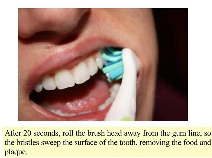 July 2012 bongo corner - Teeth cleaning tips ...