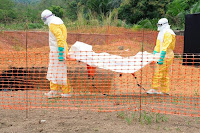 http://sciencythoughts.blogspot.co.uk/2014/07/at-least-467-dead-in-west-african-ebola.html