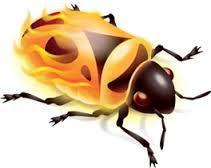 firebug in bd