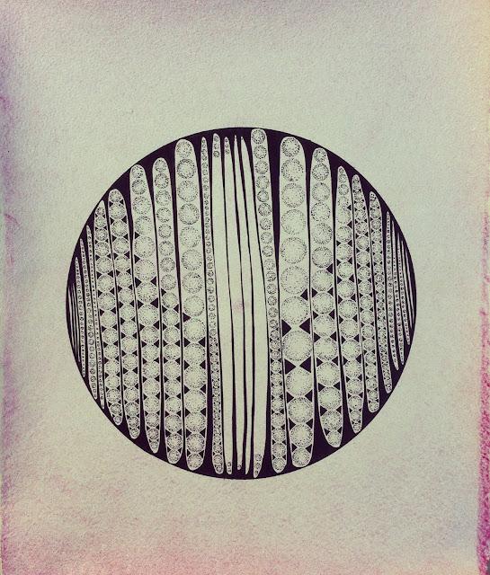 Lana Fee Rasmussen, Fireworks Capsules, 2012