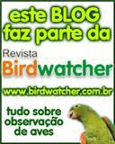 Revista Birdwatcher