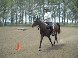 Centered Riding Clinic At Brenda's