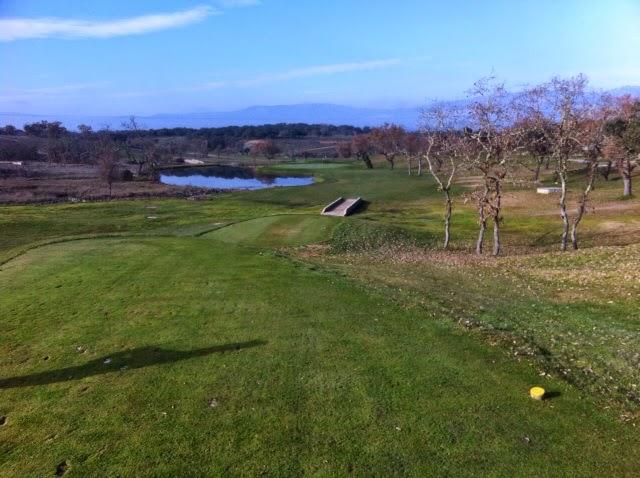 Calle golf