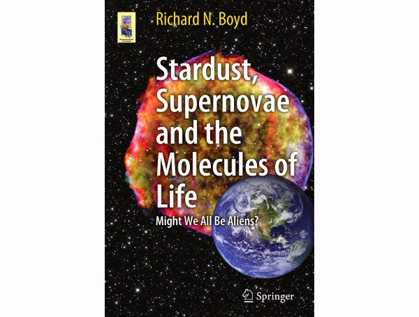 promise of stardust book review