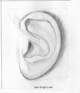 Graphite ear rendered by ©Ana Tirolese