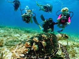 Junior open water in Phuket with Thailand Divers will open your kids eyes to a whole new world.