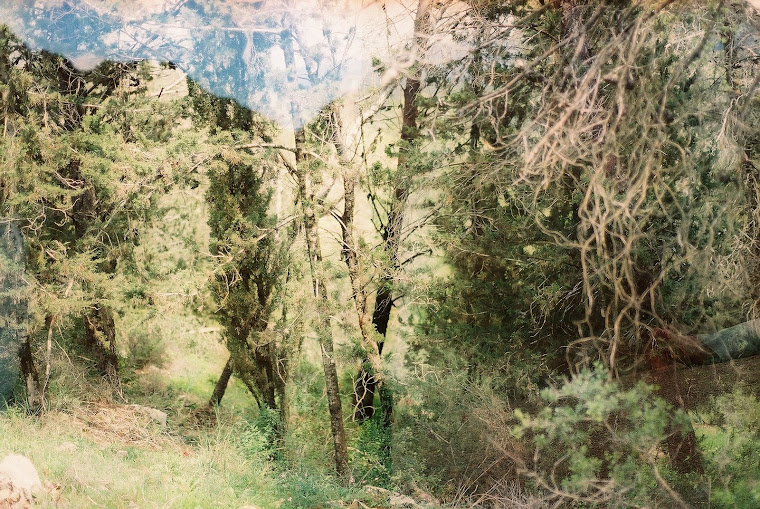 fotografický projekt -  Israel 2011