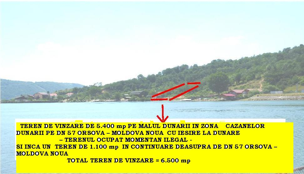 TOTAL TEREN DE VINZARE = 6.500 mp
