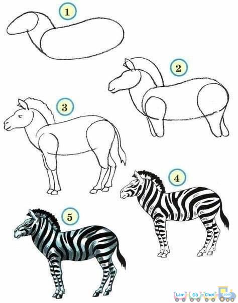 Hướng dẫn cách vẽ hình con ngựa vằn