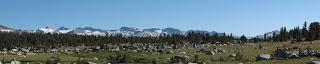 Panoramaansicht der Cathedral Range; Mount Lyell, höchster Gipfel in Yosemite, ist ganz links zu sehen