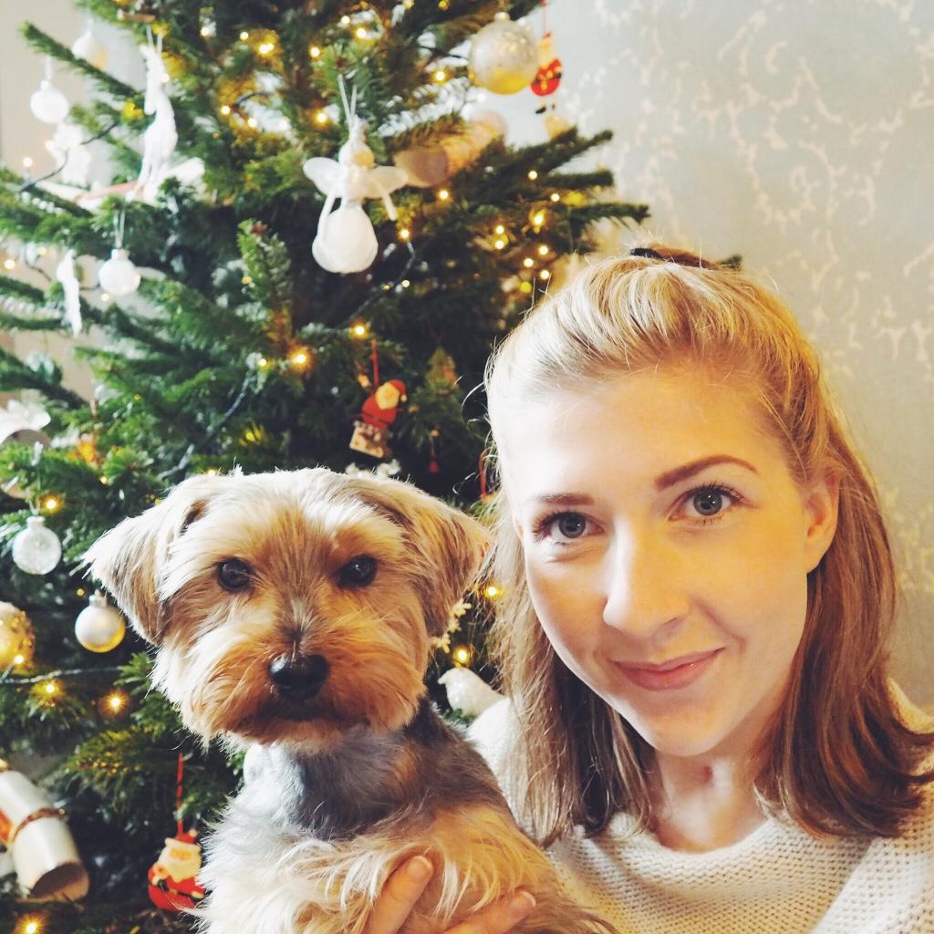 blogging, bloggingbreak, fbloggers, fblogger, yorkshireterrier, christmas, christmasbreak