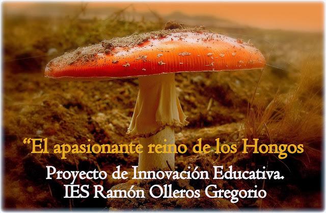 cartel anunciador del proyecto aducativo