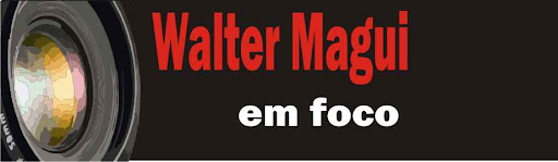 Walter Magui em Foco
