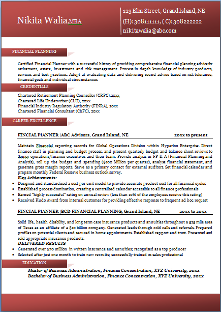 professional resume format template