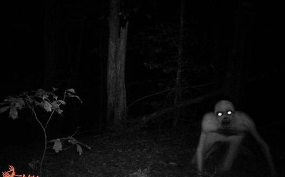 Sosok Hantu Hutan Yang Terpotret Kamera