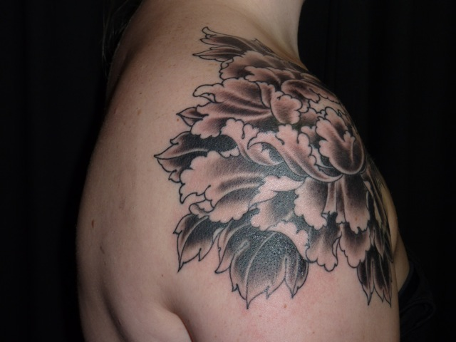 This Is The Next Phase Of A Peony That I Outlined A Few Weeks Back It